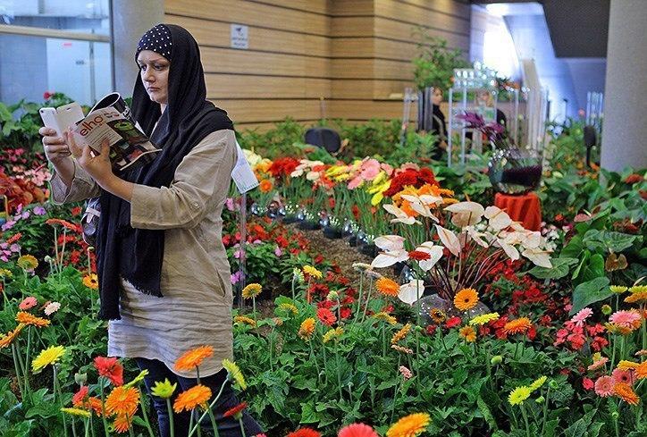 طرح توجيهي کشت گل و گیاهان زینتی در فضای باز -فرصت سرمايه گذاري١٠٤