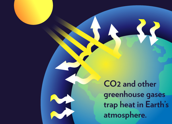 مشکلات زیست محیطی – اثر گلخانه ای