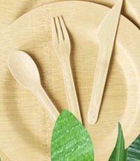 طرح توجیهی تولید ظروف یکبار مصرف تجزیه پذیر